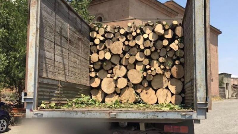 Լոռու մարզում ապօրինի ծառահատման դեպք է բացահայտվել․ վարորդը փայտանյութի օրինականության վերաբերյալ փաստաթուղթ չի ներկայացրել