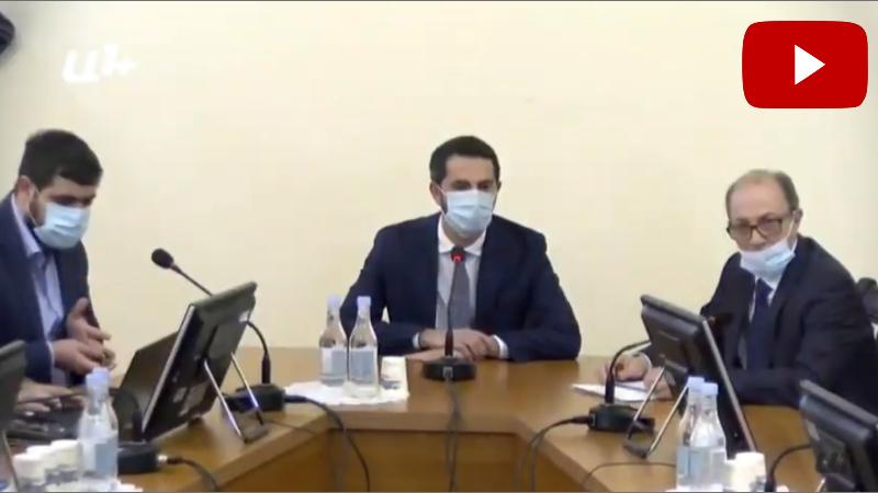 ԱԳ նախարար Արա Այվազյանը հանդիպում է ԱԺ արտաքին հարաբերությունների մշտական հանձնաժողովի անդամներին (տեսանյութ)