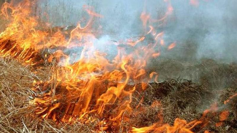 Այրվել է մոտ 150 հակ կուտակած անասնակեր
