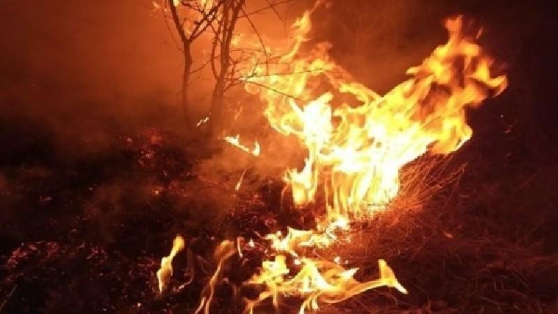 Երասխ գյուղում՝ հայ-ադրբեջանական սահմանի չեզոք գոտում, այրվում է եղեգ