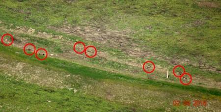 Մարտական գործողությունների հետևանքով սպանված ադրբեջանցի զինծառայողների թիվը հասել է 93-ի