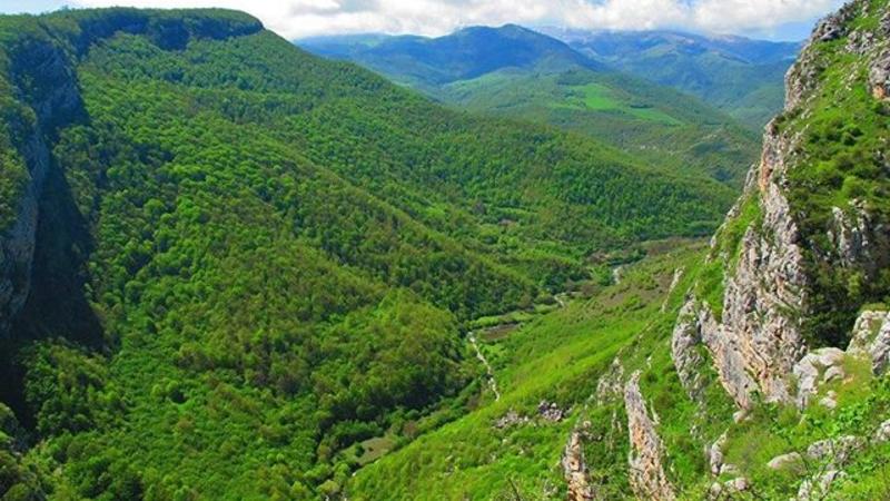 Շվեյցարիան Հայաստանին 4․500․000 շվեյցարական ֆրանկ է հատկացրել բնության պահպանության համար