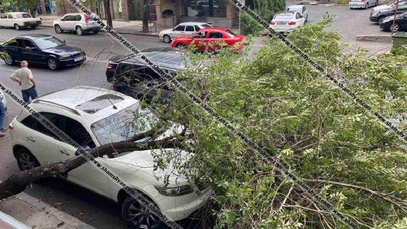 Հրապարակվել է օրեր առաջ Երևանում քամու հետևանքով ծառի՝ ավտոմեքենաների վրա ընկելու տեսանյութը