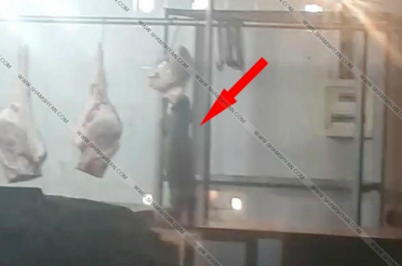 «Գում»-ի շուկայում կատվի կծոտած մսի ողջ խմբաքանակը ոչնչացվել է