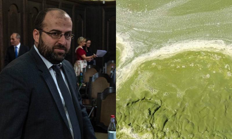 Շրջակա միջավայրի նախարարը՝ Սևանա լճի կանաչելու մասին
