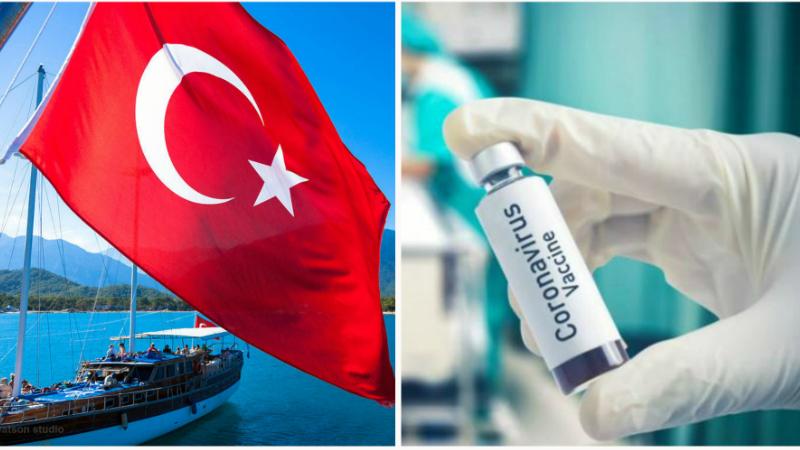 Թուրքիայում կենդանիների վրա հաջողությամբ փորձարկվել է կորոնավիրուսի դեմ նոր պատվաստանյութը. РИА Новости