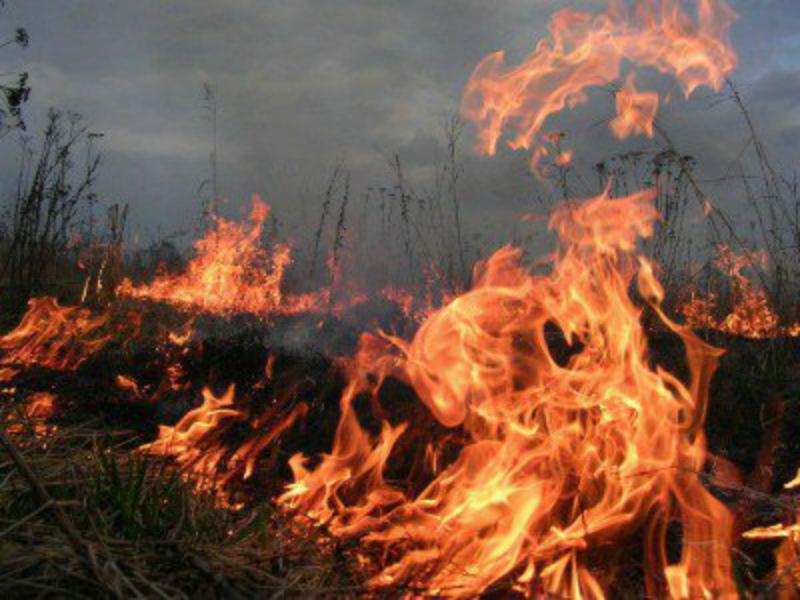 Ջրաշեն թաղամասում գազի կարգավորիչ կայանից արտահոսած գազն այրվել է. դեպքի վայր է մեկնել 2 մարտական հաշվարկ