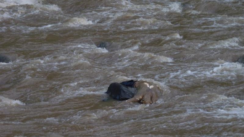 Փրկարարները Էջմիածնի ջրանցքից դուրս են բերել 55-ամյա քաղաքացու դին