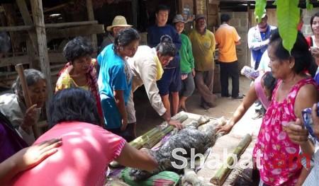 Թաիլանդի գյուղերից մեկում գոմեշի մարմնով և կոկորդիլոսի գլխով սարսափելի արարած է լույս աշխարհ եկել (լուսանկարներ)