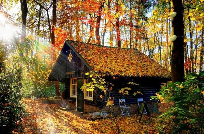 Այս տների ճարտարապետը հենց ինքը բնությունն է (լուսանկարներ)