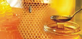 Մեղրն օրգանիզմը պաշտպանում է քաղցկեղից և սրտի հիվանդությունից