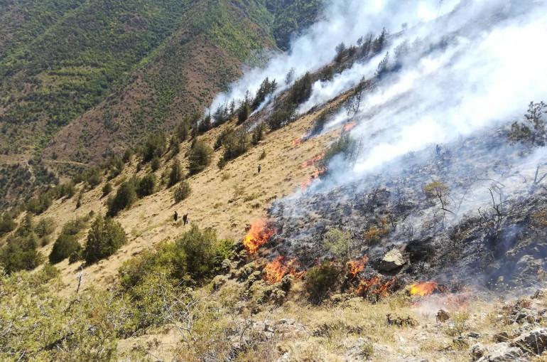 Արայի լեռան ստորոտում դեռ 5 ծխացող օջախ կա