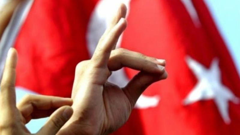 Գերմանիայում պահանջում են արգելել թուրքական «Գորշ գայլերի» գործունեությունը
