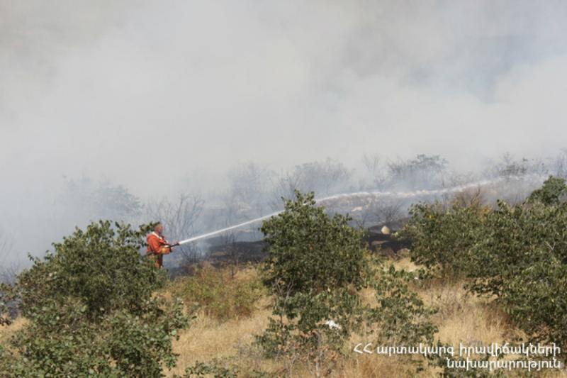 «Արևիկ» ազգային պարկի հրդեհը մեկուսացվել է․ այրվել է մոտ 12 հա բուսածածկույթ, եղևնուտ