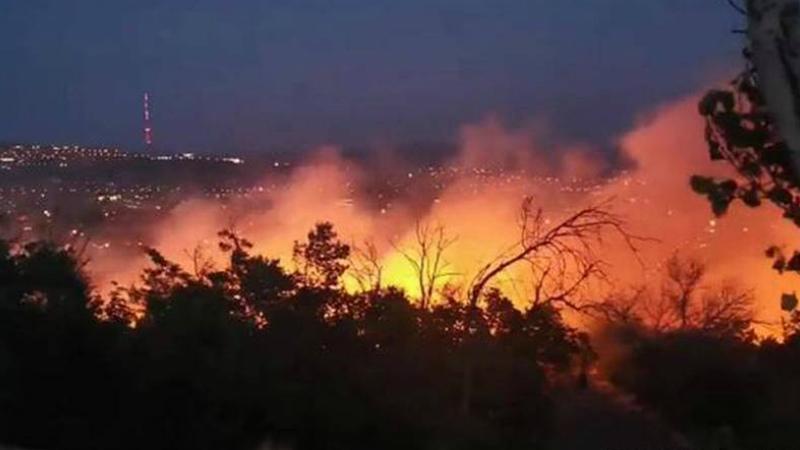 Հայոց ցեղասպանության զոհերի հուշահամալիրի մոտակայքում այրվել են վնասված ծառի արմատները