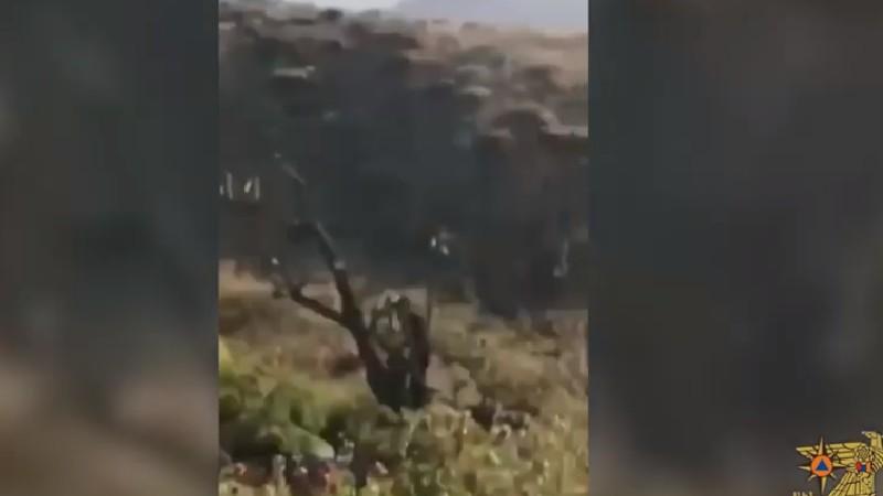 Հրդեհ «Արևիկ» ազգային պարկի տարածքում (տեսանյութ)