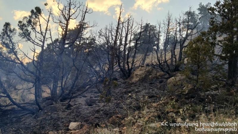 Եռօրյա աշխատանքների արդյունքում, հաջողվել է մարել Խոսրովի անտառ պետական արգելոցում բռնկված հրդեհը