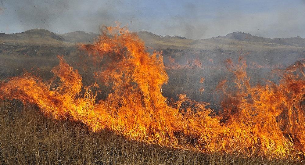 Հրդեհ Արևիս գյուղում․ այրվել է մոտ 2 հա խոտածածկույթ