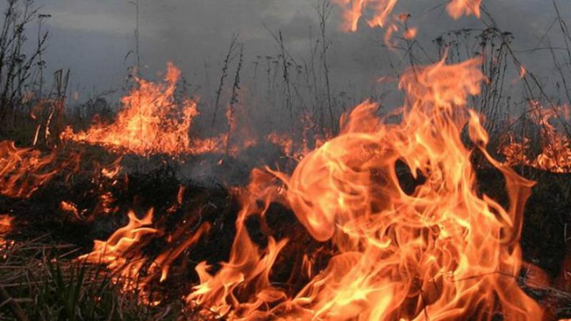 Արտավազ գյուղում այրվել է մոտ 5 հա խոտածածկույթ. ԱԻՆ