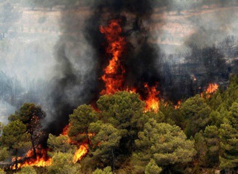 Իսպանիայում շուրջ 2,5 հազար մարդ է տարհանվել անտառային հրդեհների պատճառով