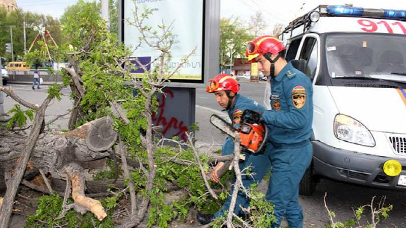 Գյուլագարակ գյուղում ուժեղ քամուց ծառը պոկվել եւ ընկել է ճանապարհի երթեւեկելի հատված. դեպքի վայր է մեկնել երկու մարտական հաշվարկ