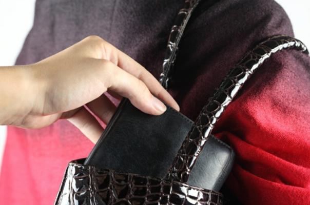 Մասիսում երիտասարդը կնոջից հափշտակել է դրամապանակը, որի մեջ եղել են բջջային հեռախոս, գումար և ոսկյա վզնոց