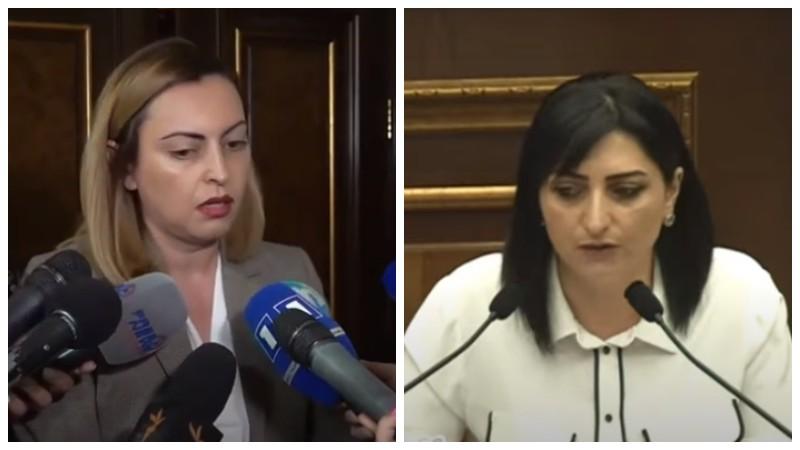 Թող Թագուհի Թովմասյանը ներողություն խնդրի, որ «Իմ քայլի» նիստերին մասնակցել է որպես իր թերթի թղթակից. Լենա Նազարյան
