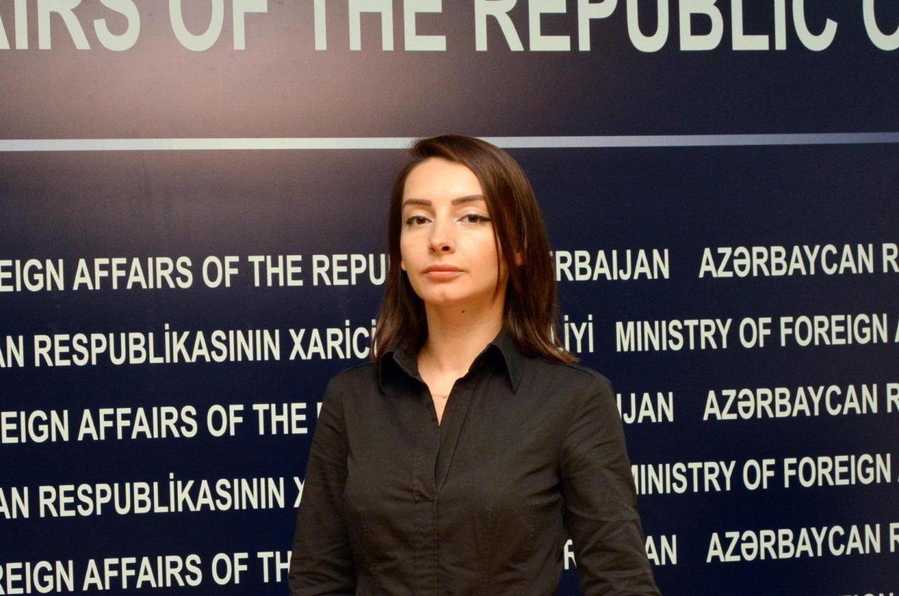 Հայաստանի վարչապետը, հնչեցնելով «Ղարաբաղի հայության» գաղափարը, վերջ է դրել բառախաղին. Ադրբեջանի ԱԳՆ