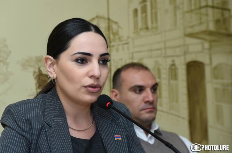 «Թիվ 19 պոլիկլինիկա» ՓԲԸ-ի տնօրենը դատական հայց է ներկայացրել Թեհմինա Վարդանյանի դեմ