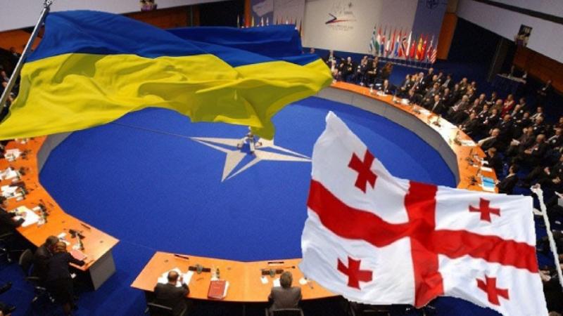 Կբացի՞, արդյոք, ՆԱՏՕ-ն իր դռները Ուկրաինայի ու Վրաստանի առջև․ «Հայաստանի Հանրապետություն»