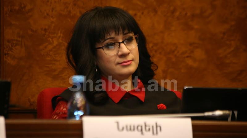 Ադրբեջանը հումանիտար ուղղությամբ իր ստանձնած պարտականությունները չի իրականացնում. Նազելի Բաղդասարյան