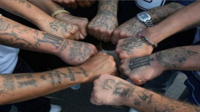 Քրեականներն ակտիվանում են. Նրանց Ռուսաստանից վտարում են՝ Հայաստանում են համախմբվում. «Ժամանակ»