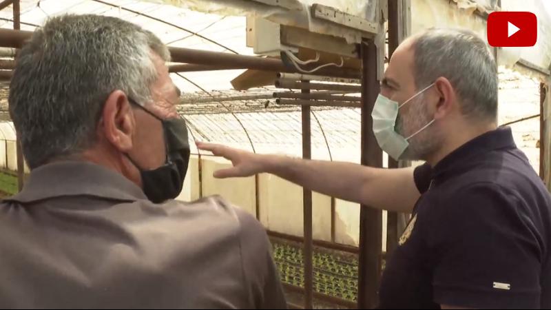 Ազատավանի ջերմոցային տնտեսություններից մեկում եմ․ Նիկոլ Փաշինյան (տեսանյութ)