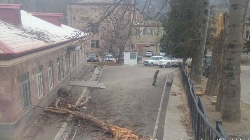 Ուժեղ քամու հետեւանքով ծառն ընկել է Բերդ քաղաքի ԲԿ-ի տանիքին. ԱԻՆ