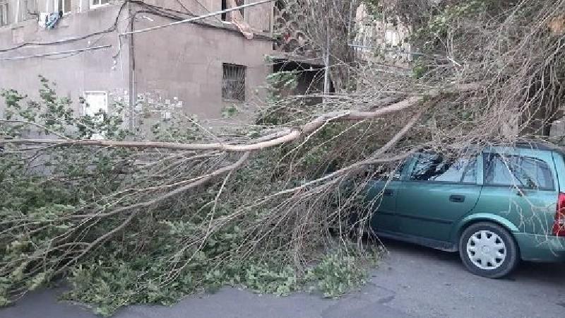 Երևանում քամին մի շարք վնասներ է պատճառել․ ԱԻՆ