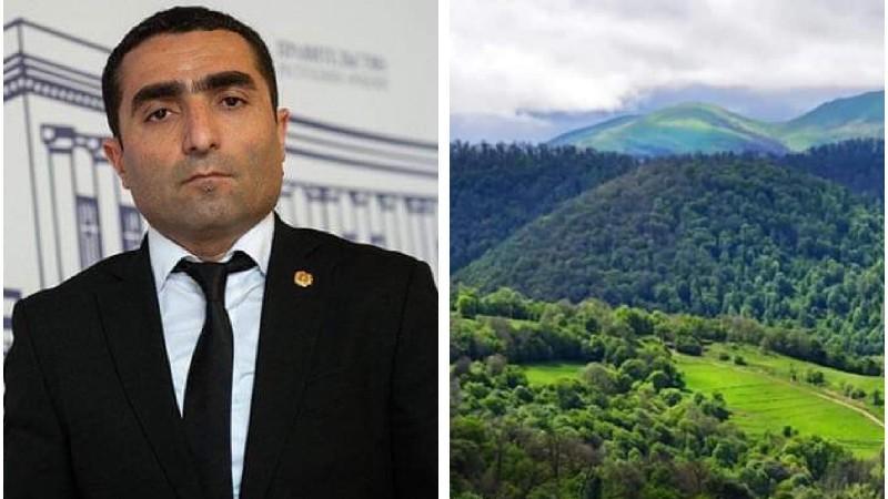 Հայաստանի անտառների պահպանությանն ուղղված մեր քաղաքականությունը արդյունավետ է. Ռոմանոս Պետրոսյան