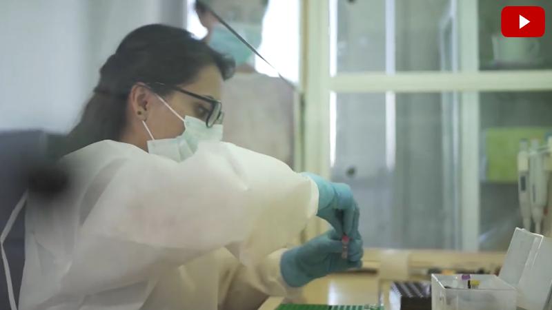 Կորոնավիրուսի հաստատման՝ հայկական արտադրության ՊՇՌ թեստերը պատրաստ են (տեսանյութ)