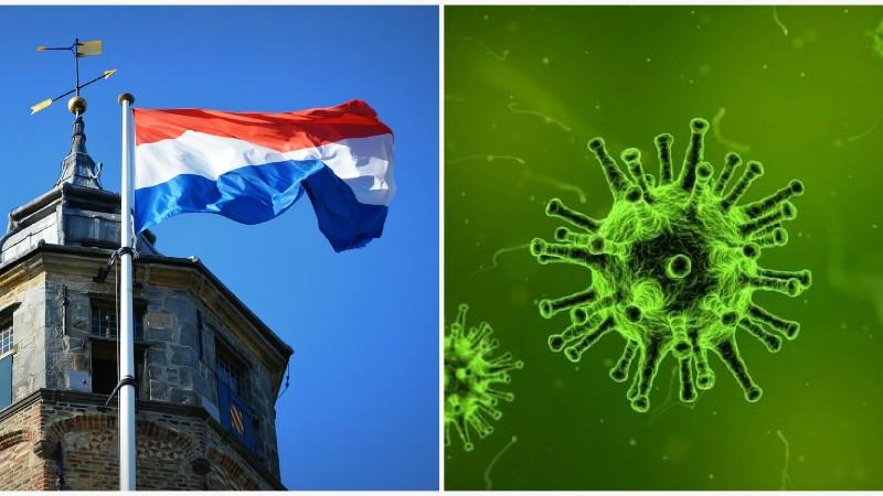 Նիդեռլանդներում գիտնականները COVID-19 կորոնավիրուսի հակամարմին են հայտնաբերել
