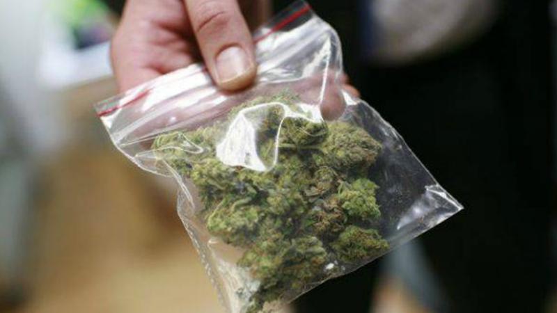 Անիի ոստիկանները խոշոր չափի թմրանյութ են հայտնաբերել