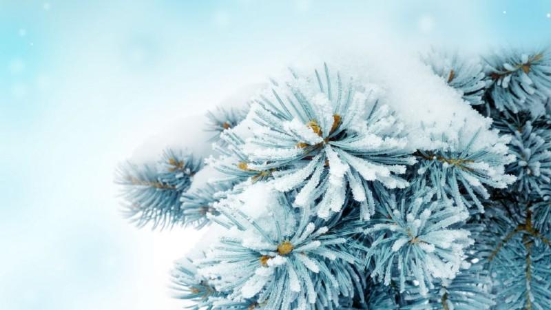 Դեկտեմբերը կանցնի նորմայից տաք, օդի ամսական միջին ջերմաստիճանը նորմայից բարձր կլինի 1-2 աստիճանով
