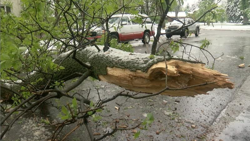 Տներից մեկի մոտակայքում ծառը կոտրվել, ընկել է տանիքի վրա և վնասել այն