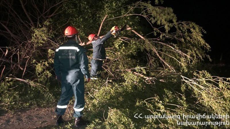 Փրկարարները կոտրված ծառը դուրս են բերել ճանապարհի երթևեկելի հատվածից