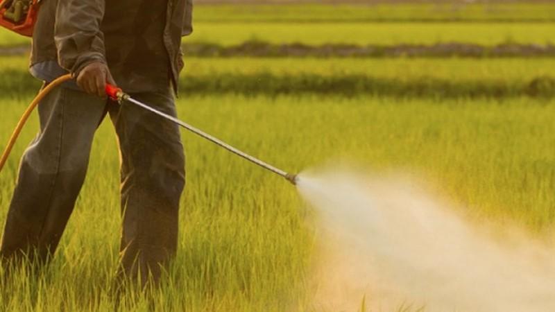 ՀՀ-ում արձանագրվում են թունաքիմիկատներով թունավորումների դեպքեր. ՀՀ ԱՆ