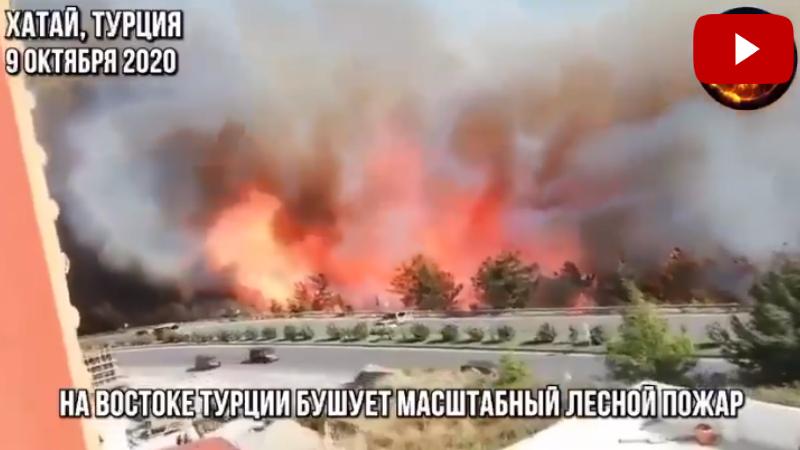 Թուրքիայում սաստիկ անտառային հրդեհներ են բռնկվել (տեսանյութ)