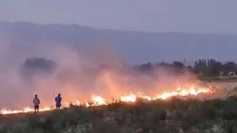 Էջմիածին-Արմավիր ճանապարհի խոտածածկ տարածքների այրման վերաբերյալ գրություններ կուղարկվեն ոստիկանություն,ԱԻՆ և ԲԸՏՄ