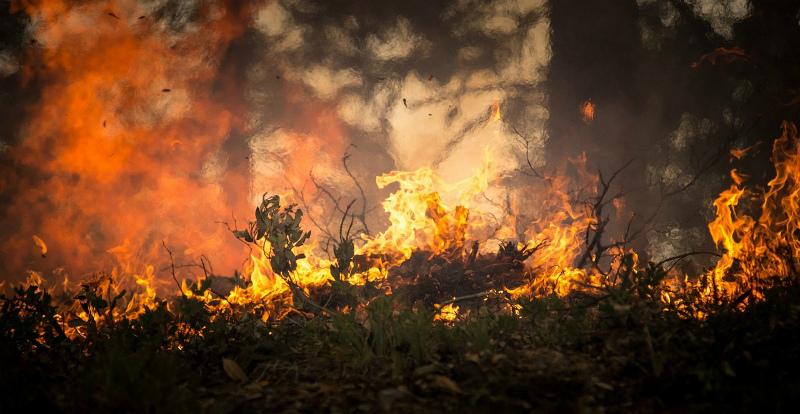 Մասիս քաղաքի գերեզմանատան մոտ ցորենի արտ է այրվում․ այնտեղ է մեկնել 7 մարտական հաշվարկ