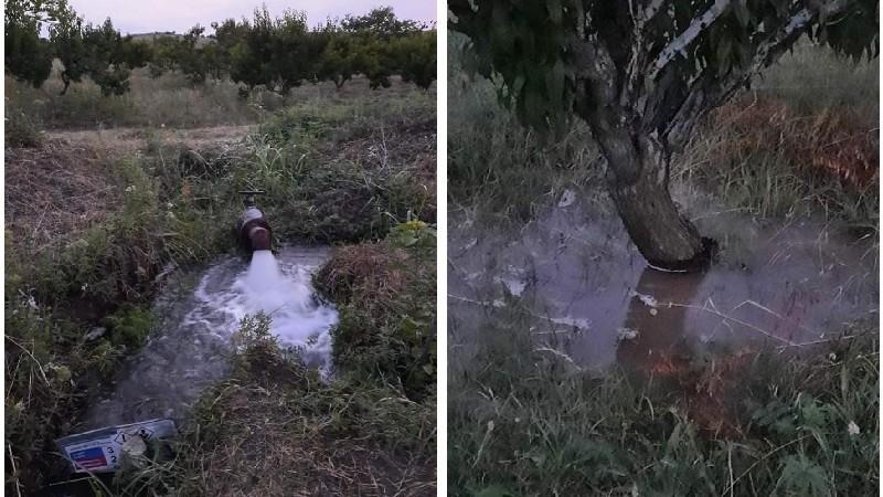 Այսուհետ Բերդավանի այգիները 24 ժամ ջուր կունենան