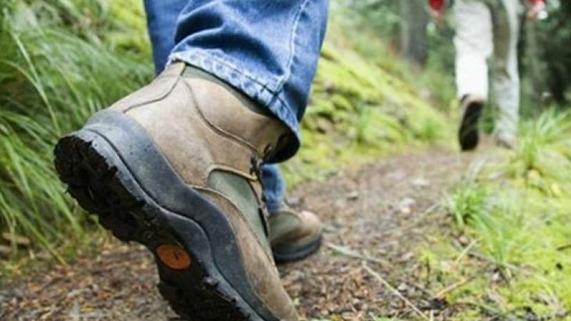 Փրկարարները հայտնաբերել են «Սուլեյմանի դոշ» կոչվող հանդամասի մոտակայքում մոլորված 17-ամյա քաղաքացուն