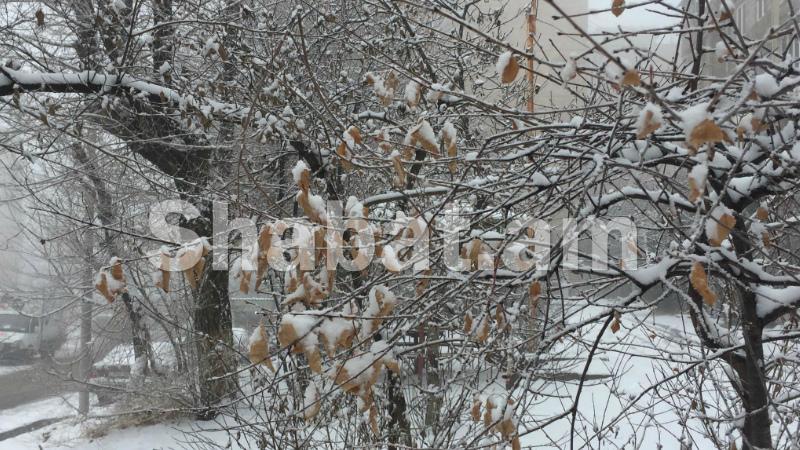 Երևանում սպասվում է մինչև -15 աստիճան ցուրտ