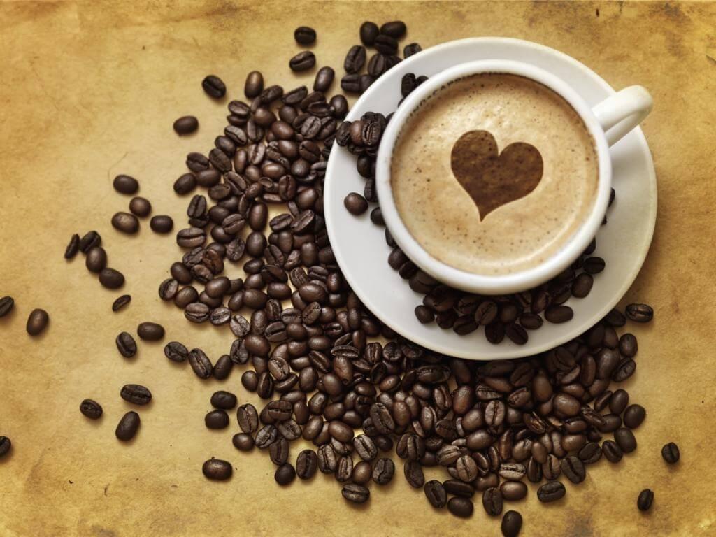 0e3eb272fa6cb56aa65dcoffee5_zps9d7320fd.jpg